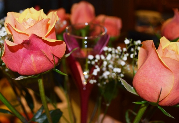 DSC_0182 Roses and Champagne