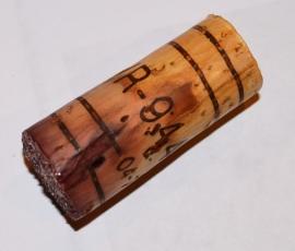 DSC_0185 Amarone Cork