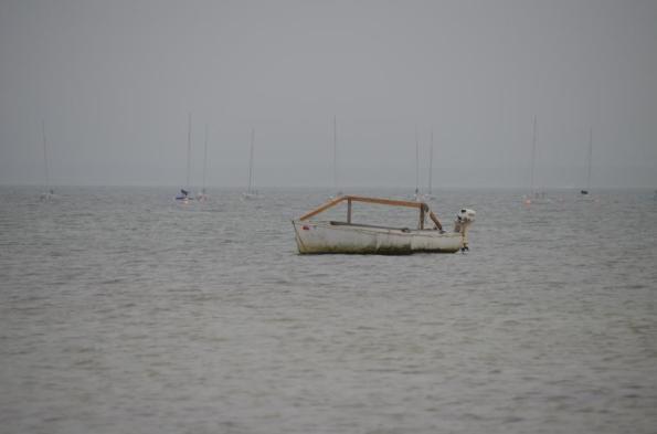 fog DSC_0824