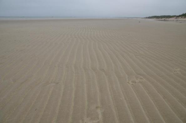 sand DSC_0830