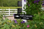 Napa Valley - that way
