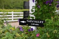 Napa Valley - that way