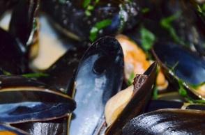 Cozze Prince Edward Island mussels