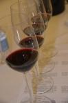 Ballard Canyon Syrah Tasting