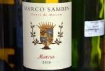 Marcus by Marco Sambin