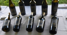 Shaver wines