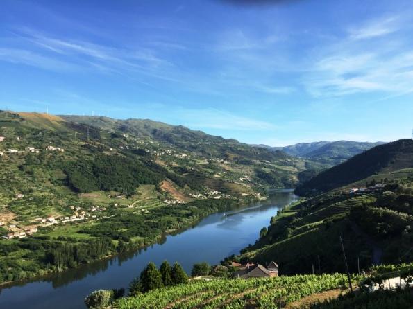Douro valley 5
