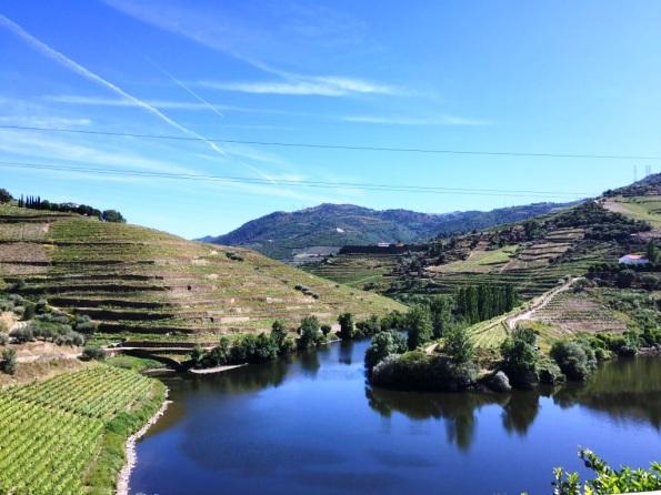 Quinta do Tedo Vineyards