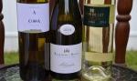 Rare Spanish White Wines