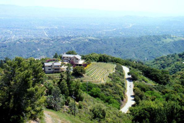 Mountain vineyards view (Ridge)