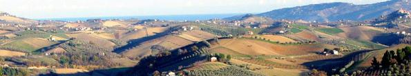 Hills of Marche Source: San Giovanni web site