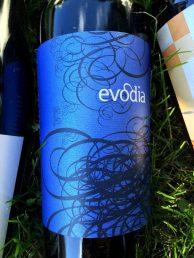 evodia-varietal-de-aragon-red-wine