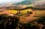Jordan Vineyard Youngberg Hill Vineyards
