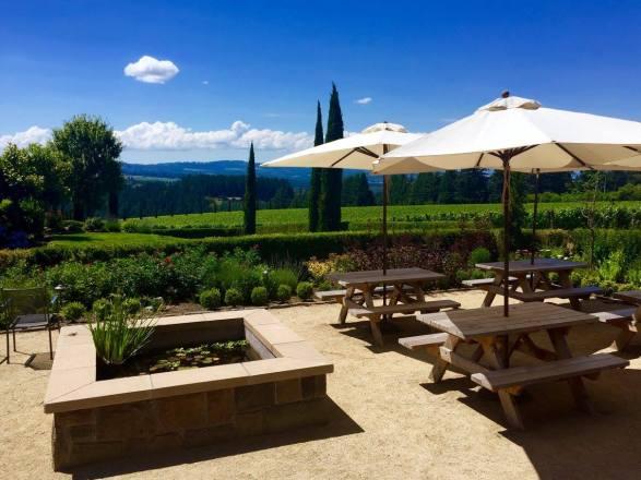 Terrazzaa at Alloro Vineyard