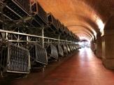 Franciacorta cellar