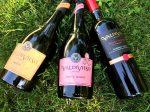 Viña Valdivieso wines