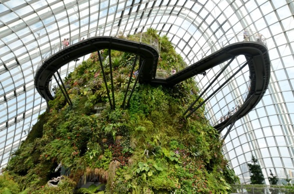 Cloud Forest Gardens by the Bay SingaporeCloud Forest Gardens by the Bay Singapore