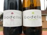 Bodegas Godelia