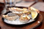 fresh oysters station house port chester