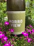 Morro View GrunerVeltliner
