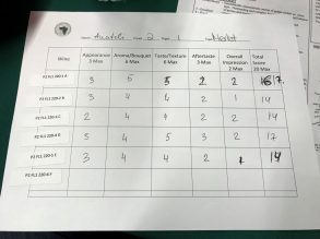 Wine Flight assessment sheet