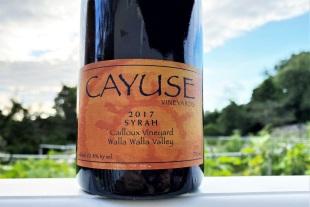 Cyause Syrah Calloix Vineyard