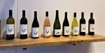 Terra Pacem wines(1)